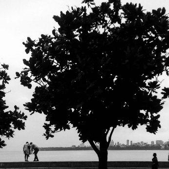 PICTURE BY GAJANAN DUDHALKAR (15)