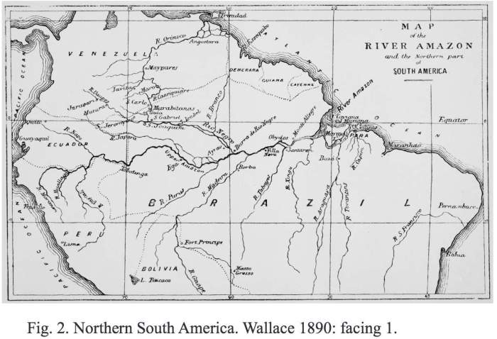 Wallaceने केलेला Amazonप्रवासाचा नकाशा Source ScienceforBrazil