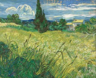 935px-Vincent_van_Gogh_-_Green_Field_-_Google_Art_Project